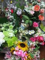 080328flower_3